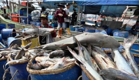 Bank Dunia Kucurkan Rp14,7 Miliar untuk Sektor Perikanan Indonesia