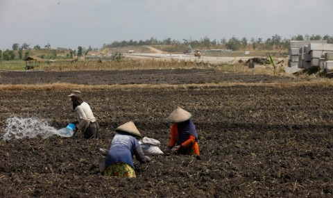 Kementan Antisipasi Dampak La Nina ke Lahan Pertanian