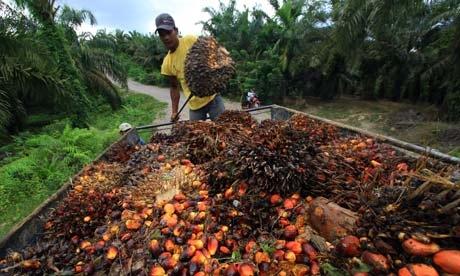 Produksi Minyak Sawit Indonesia Naik Tiga Bulan Beruntun