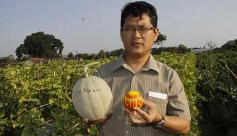 Peneliti UGM Kembangkan Kosmetik dari Melon
