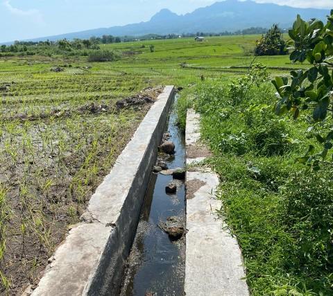 Petani di NTT Butuh Perbaikan Irigasi Pertanian