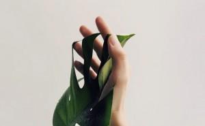 Bye-bye Asam Urat dengan Lakukan 5 Langkah Ini
