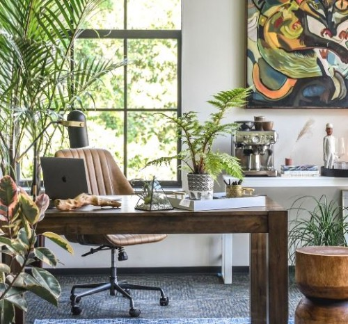 Sejuknya interior rumah kamu jika ada tanaman seperti ini. (Foto: Dok. Instagram Hilton Carter/@hiltoncarter)