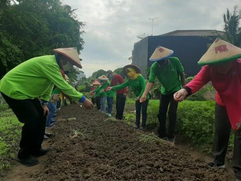 Demi Hijaukan Jakarta Utara, Warga Sunter Agung Didorong Menanam Sayuran