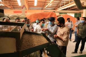 Koperasi di Aceh Ekspor 10 Kontainer Kopi ke Starbucks AS, Dikawal LPDB-KUMKM