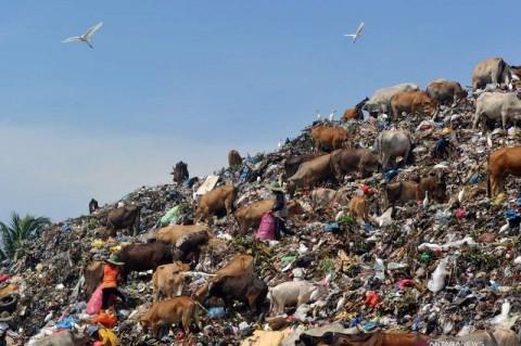 Beijing akan Larang Impor Sampah Asing Mulai 1 Januari 2021