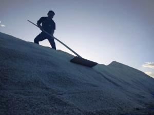Pengusaha Garam Keluhkan Kendala Cuaca Hambat Produksi