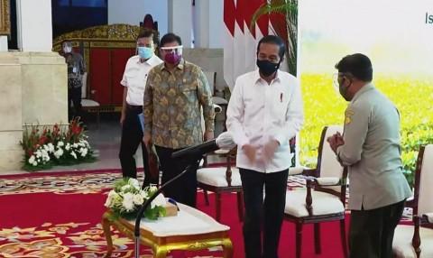 Jokowi Dorong Pembangunan Pertanian Berskala Luas