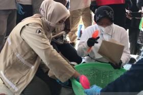Mensos Tinjau Pengungsi Banjir di Jember