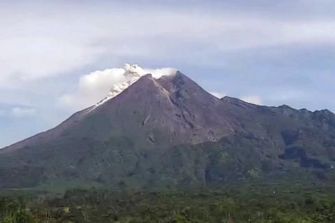 Gunung Merapi Muntahkan Awan Panas dan Lava Pijar 77 Kali