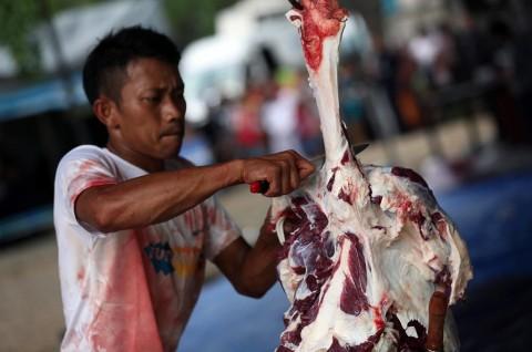 Tata Niaga Daging Nasional Perlu Dibenahi