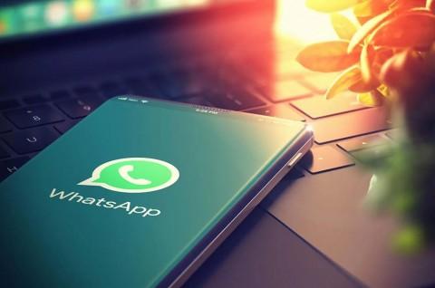 Begini Cara Mengembalikan Kontak WhatsApp yang Hilang