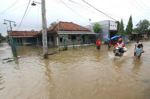 Petambak Ikan dan Udang di Indramayu Rugi Besar Terdampak Banjir