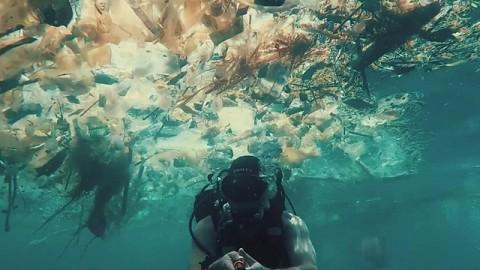 Visinema Pictures Segera Rilis Film Dokumenter tentang Lingkungan