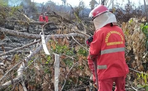 Ratusan Titik Api Muncul di Riau