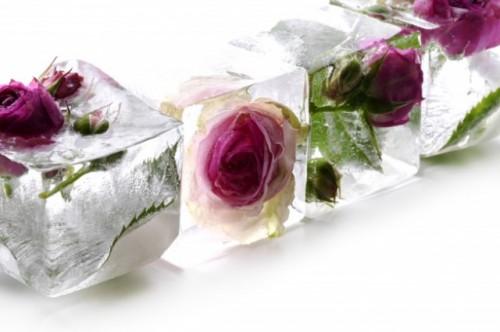 Ada beberapa manfaat air bunga mawar untuk kulit. (Foto: Ilustrasi/Freepik.com)