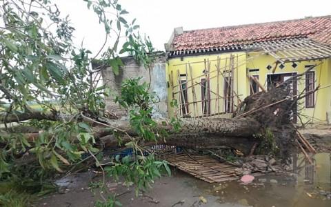 Puluhan Rumah di Kabupaten Tangerang Ambruk Dihantam Angin