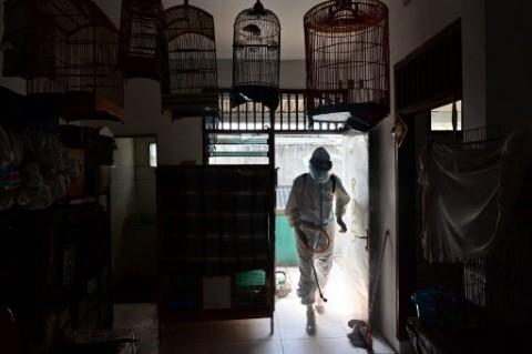 Beda Wuhan dan Jakarta Setelah Satu Tahun Covid-19 Melanda