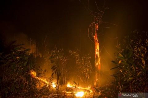 Riau Sediakan Alat Berat untuk Masyarakat Buka Lahan Tanpa Membakar
