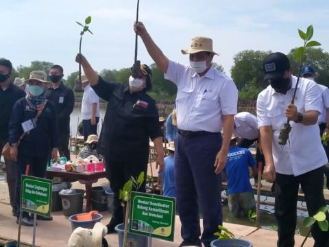 Penanaman Mangrove Nasional Dimulai di Tangerang