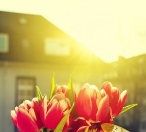Ini Lho Manfaat Vitamin D dari Sinar Matahari