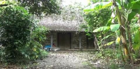 Populer Daerah, Kampung Mati hingga Pohon Tumbang Tewaskan 4 Orang