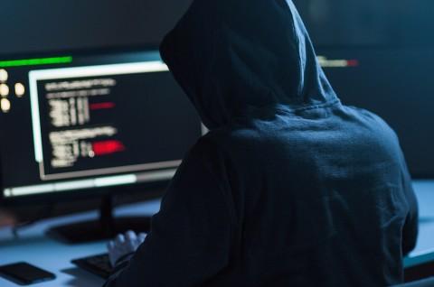 Sebanyak 30.000 Organisasi Dibobol Hacker