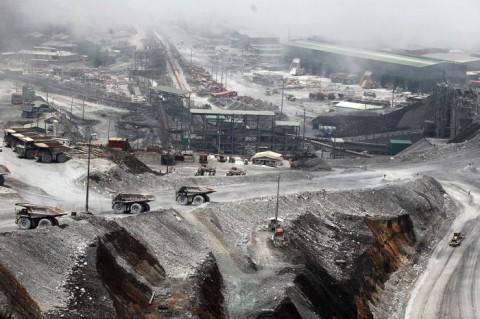 MIND ID Buka Opsi Pembangunan <i>Smelter</i> Baru di Papua