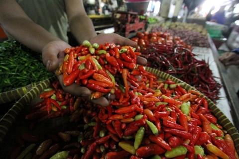Harga Cabai Rawit Melonjak Bikin Inflasi Maret 2021