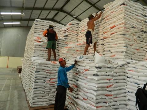 Bulog Sumut Realisasikan Pembelian 5.530 Ton Beras Petani