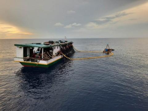 Tangkap 5 Kapal Asing Ilegal di Laut Natuna, KKP: Pencuri Incar Komoditas Cumi