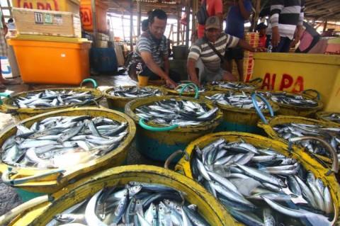 Pemerintah Pastikan Beri Sanksi Administratif pada Pencuri Ikan