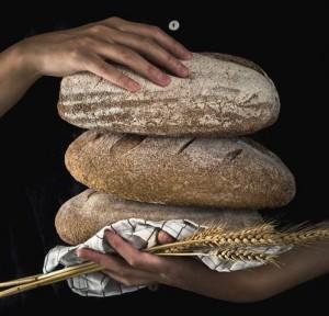 Manfaat Roti Gandum Utuh, Salah Satunya Mengurangi Risiko Stroke