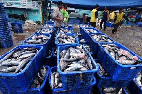 Petugas Amankan Pelaku <i>Sport Fishing Ilegal</i> Asal Malaysia di Perairan Sebatik
