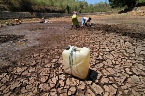 Sebulan Tak Hujan, Gunungkidul Diterpa Kekeringan