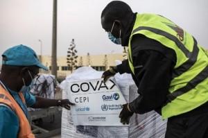 WHO Desak Produsen Vaksin Covid-19 Bagikan 50 Persen Produk ke COVAX