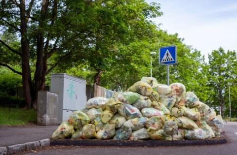 Sampah Makanan RI Picu Kerugian Ekonomi hingga Rp551 Triliun per Tahun