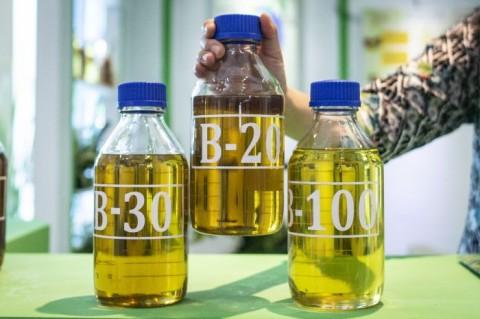 Pertamina Salurkan B30 di 5.518 SPBU