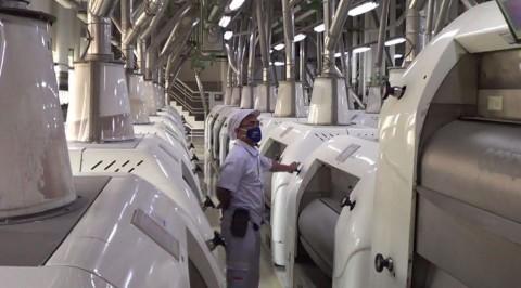 Tekan Bahan Baku Impor, Kemenperin Perkuat Rantai Pasok Industri Refraktori