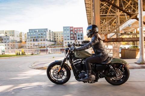 Bercita-Cita Ingin Punya Harley-Davidson? Cek Dulu Harganya