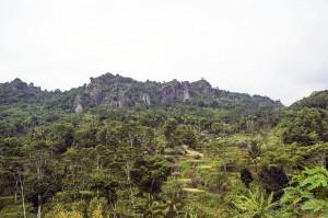 Menparekraf Dorong Pengembangan Desa Wisata Berbasis <i>Ecotourism</i>