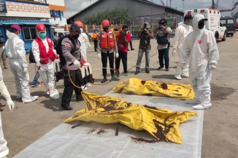 SAR Pontianak Temukan 21 Korban Meninggal Akibat Kapal Tenggelam di Perairan Kalbar
