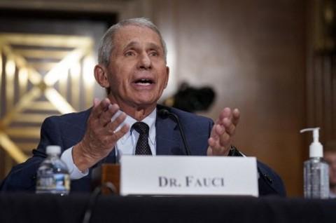 Kesal Diserang Rand Paul, Fauci: Justru Anda yang Berbohong, Senator!