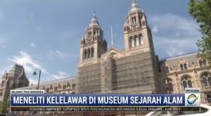 Jelajahi Museum Alam Eropa, Menguak Asal Usul Covid-19 melalui Kelelawar