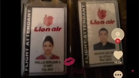 Genit Tingkat Dewa, Beredar Surat Eks Pramugara Lion Air untuk Penumpang