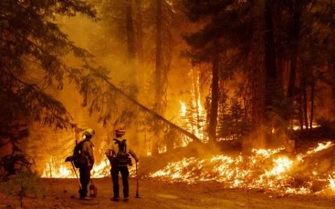 Kerja Tanpa Henti, Petugas Pemadam Kebakaran California Terbakar Habis