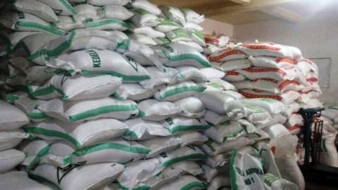 Impor Sengsarakan Petani, Pemerintah Diminta Perhatikan Biaya dan Sarana Produksi