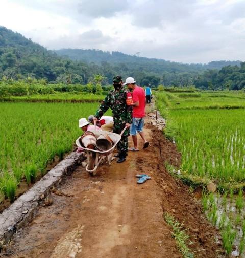 Kehadiran Jalan Pertanian di Ciamis Genjot Produktivitas Petani