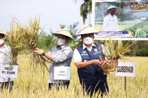 Herman Deru Optimistis Sumsel Capai Target Daerah Lumbung Pangan Nasional