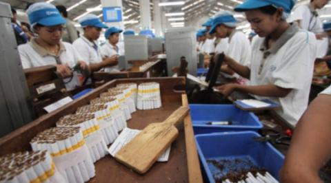 Serikat Pekerja Tolak Rencana Kenaikan Tarif Cukai Rokok Tahun Depan